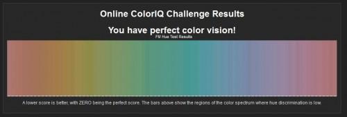 Online Color Challenge結果