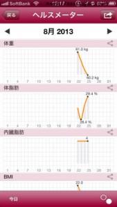 ヘルスメーターグラフ
